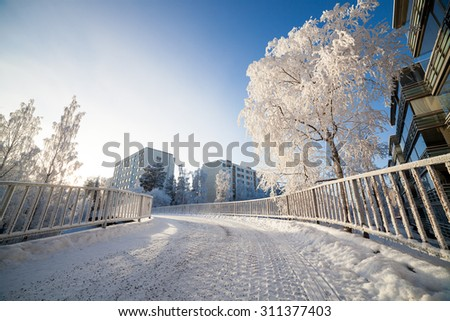 Cold fresh winter morning  - stock photo