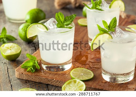 Cold Refreshing Iced Limeade with a MInt Garnish - stock photo