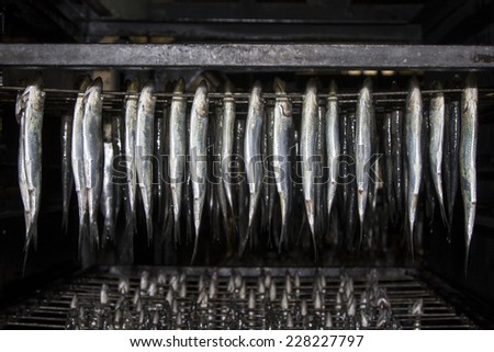 Cold smoked fish. Food Industry. - stock photo