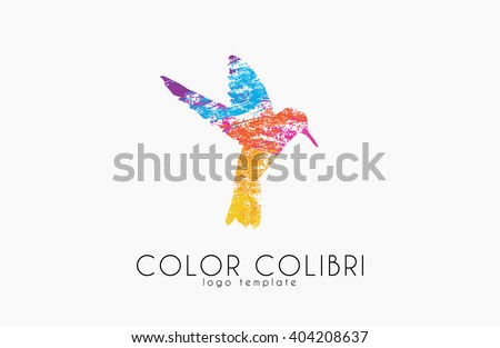 Colibri logo. Color colibri. Bird logo. Creative bird - stock photo