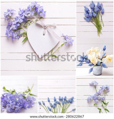 Collage from photos with fresh tender blue flowers and decorative heart on white painted wooden planks. Selective focus.  - stock photo