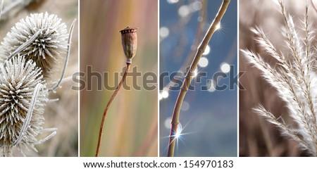 Collage - November impressions - stock photo