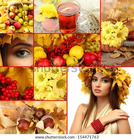 Collage of beautiful autumn - stock photo