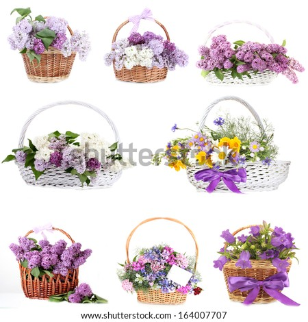 Collage of beautiful flowers in wicker baskets isolated on white - stock photo