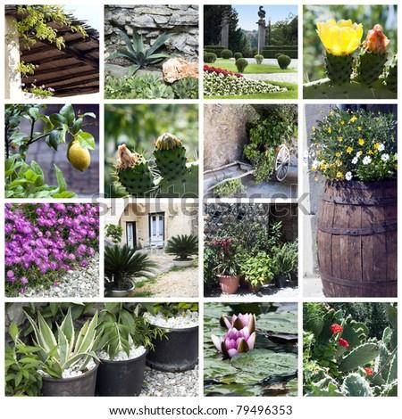Collage of beautiful garden - stock photo