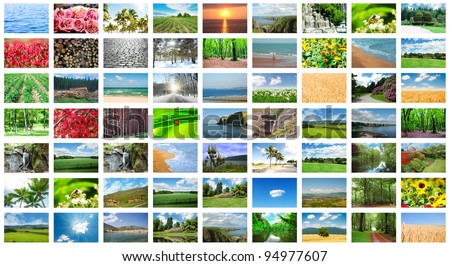 Collage of many nature photos - stock photo