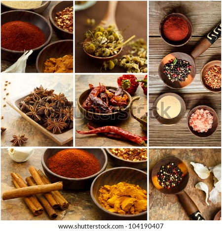 Collage of many Spices - stock photo