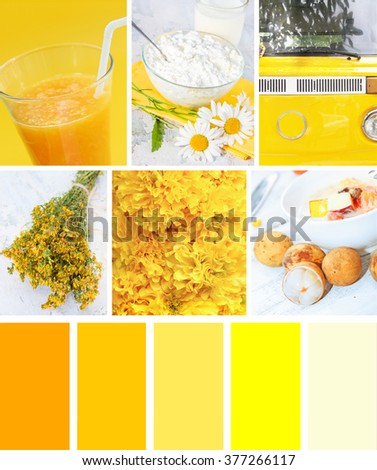 Collage of photos in yellow colors - stock photo