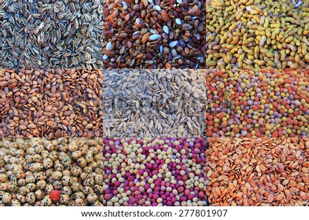 Collage of spices in a middle east market - stock photo