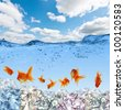 Collage of swimming gold fish and money symbols - stock photo