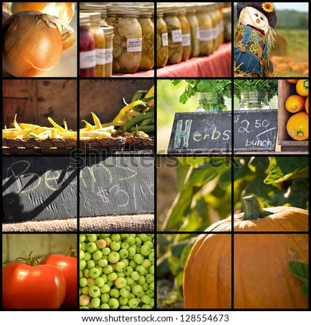 Collage of various farmer's market and harvest images - stock photo