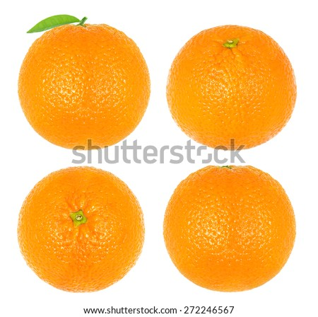 Collage oranges isolated - stock photo