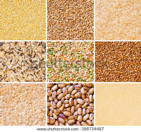 Collage with cereals: oats, millet, rice, buckwheat, wheat, spelt - stock photo