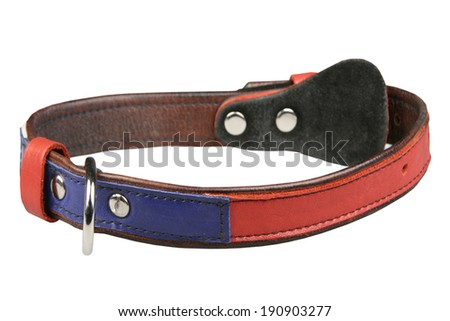 Collar for a dog on a white background - stock photo