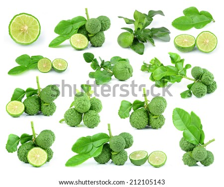 collection Fresh kaffir lime with leaf isolated on white background - stock photo