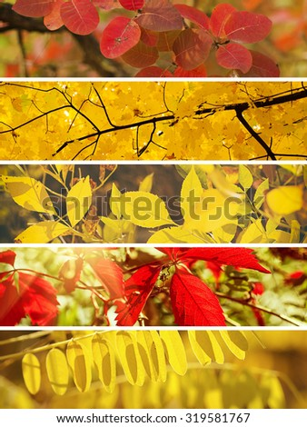 Collection from different kinds of autumn seasonal horizontal backgrounds, suitable for web sites - stock photo