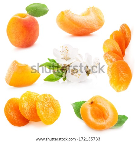 Collection of apricots fruits and flowers, isolated on white background - stock photo