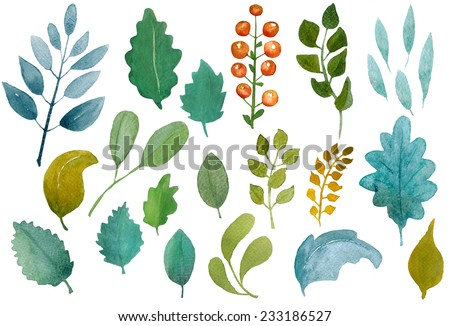 Collection of beautiful hand-drawn watercolor leaves isolated on white background, raster illustration - stock photo