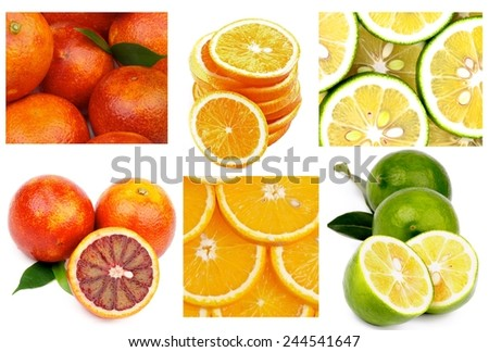 Collection of Citrus Fruits with Blood Oranges, Orange Fruits and Abkhazian Lemons Full Body, Slices and Backgrounds - stock photo
