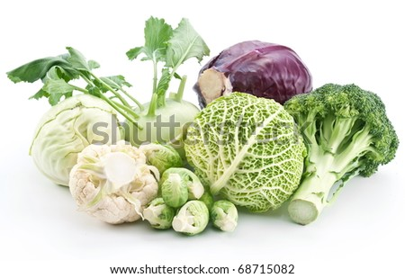 Collection of different varieties of cabbage on a white background. - stock photo