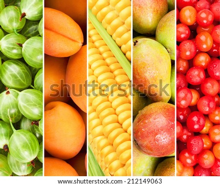 Collection of fresh summer fruits in the form of vertical stripes - stock photo