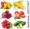 collection of fresh vegetables isolated on white background - stock photo