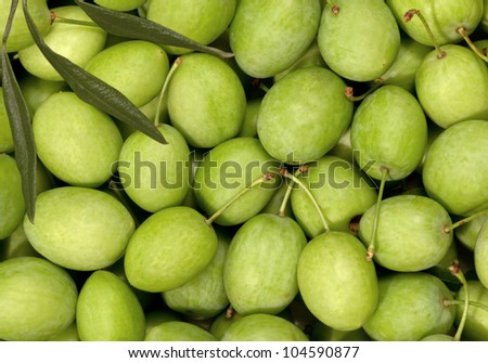 Collection of green Olives full frame - stock photo