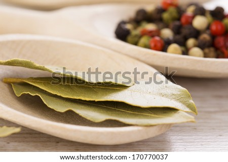 Collection of herb and spices on a wooden spoon. - stock photo