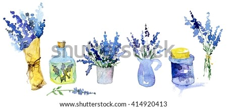 Collection of lavender flowers on a white background. Vintage flowers set. Herbs from garden. Herbs isolated on white. Herbs plant. gardening country design. florist, plant decoration. Isolated white. - stock photo