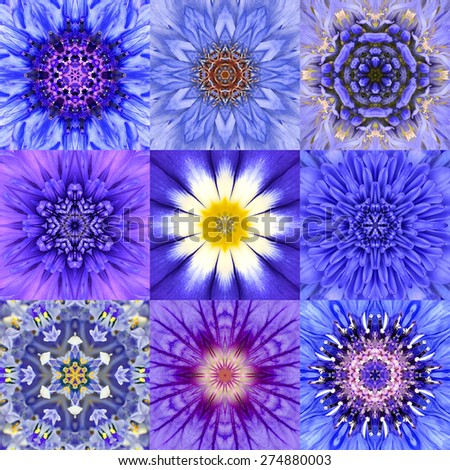 Collection of Nine Concentric Blue Flower Mandalas. Kaleidoscope Concentric design. Full Flower Background - stock photo