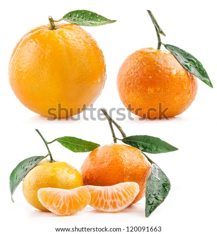 Collection of Orange and Tangerines fruit with leaf and water drops isolated on white background - stock photo