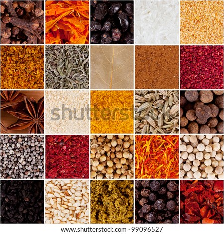 collection of spices - stock photo