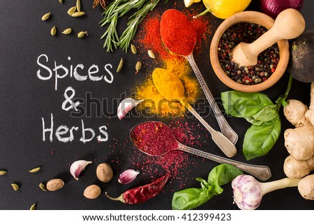 collection of spices and herbs - stock photo