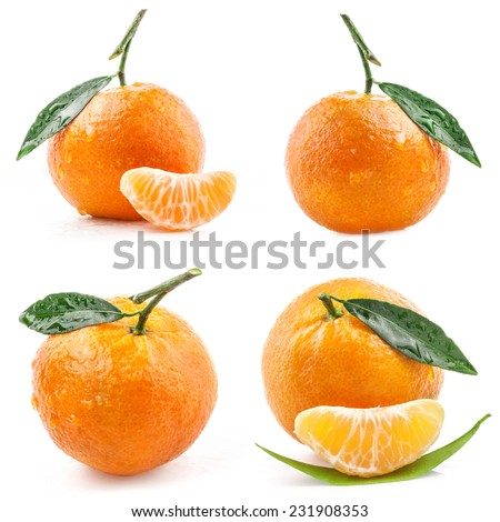 Collection of Tangerines fruit isolated on white background - stock photo