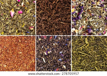 Collection of tea isolated on white background - stock photo