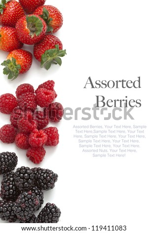 Collection of wild berries on a white background (easy to remove sample text) - stock photo