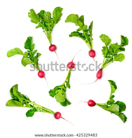Collection red radish isolated on white background. Top view. - stock photo