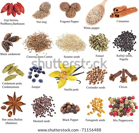Collection set of heap spices with names close up isolated on white background - stock photo