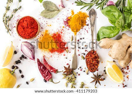 collection spices, herbs on a white background - stock photo