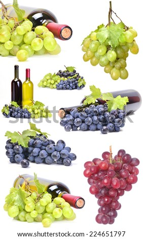 Collection wine grape - stock photo