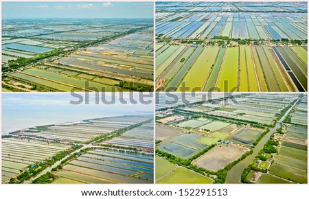 collections of Aerial view of rice field terraces in Thailand - stock photo