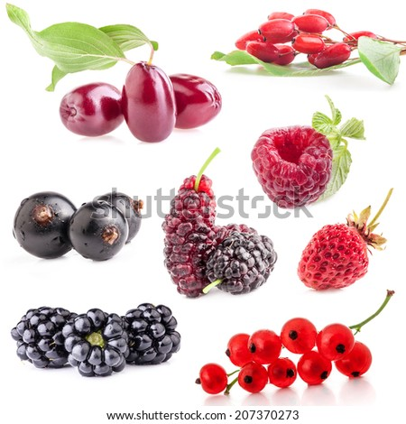 Collections of berry isolated on white background - stock photo