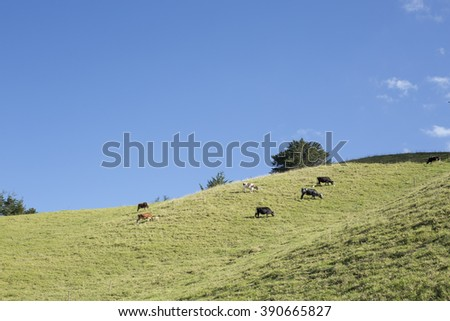 Colombian beautiful mountainous landscape. - stock photo
