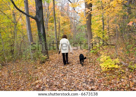 Color DSLR stock picture of mature, fit, adult woman exercising walking her pure bred black labrador retriever in the fall woods.  Autumn leaves turning to brown.  Horizontal with copy space for text. - stock photo