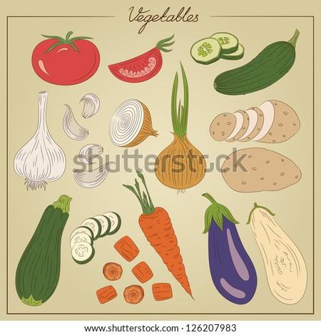 Color vintage vegetables illustration - stock photo
