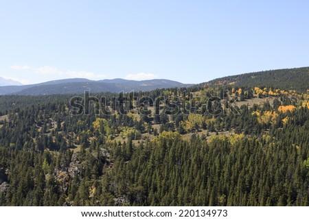 Colorado Mountain Scene with Aspens - stock photo