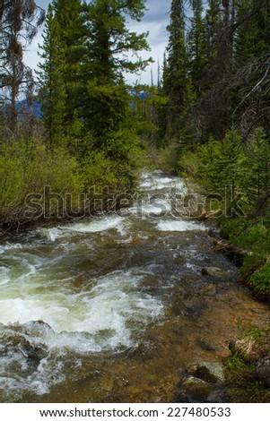 Colorado Rocky Mountain Creek - stock photo