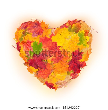 Colored autumn leaves in heart shape isolated on white background - stock photo