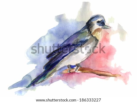 colored bird on a branch painted in watercolor - stock photo