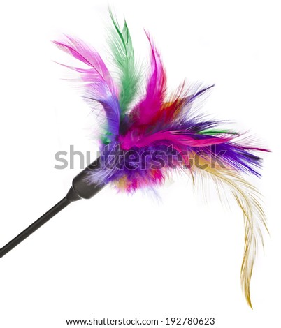 Colored feather toy for cats on a white background - stock photo